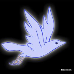 Twitter Love Bird