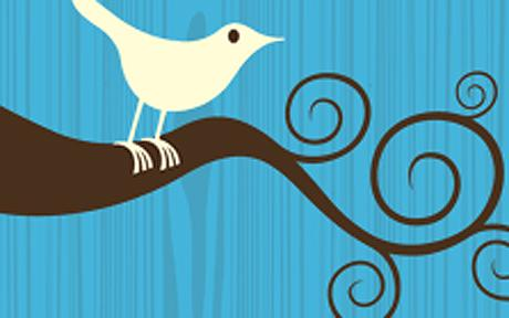 Twitter success isn't left to the birds!