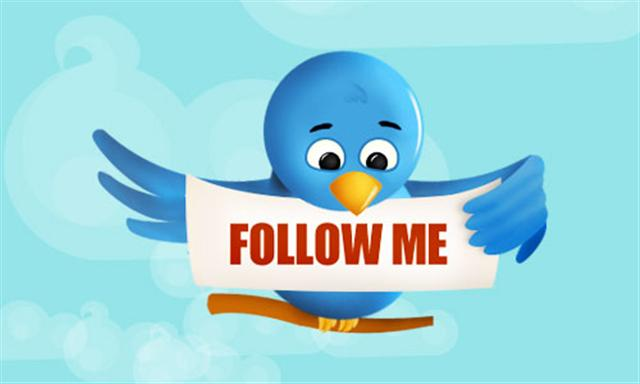 Follow Me... to Twitter success